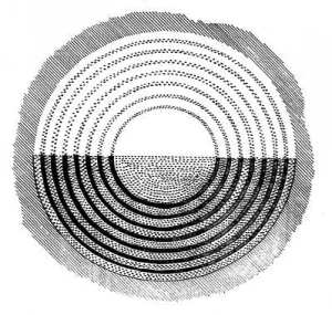 Fig. 3. Drawing of seven rings surrounding a circular feature.