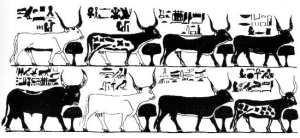 Fig 2. The Bull of Heaven at lower left with different horns than his harem herd.